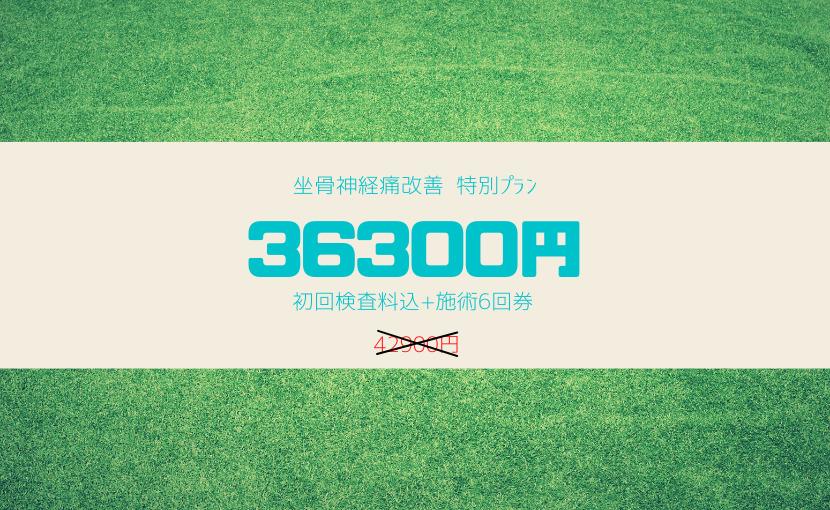 特別料金36300円